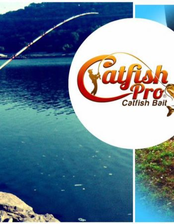 Catfish Pro Catfish Bait