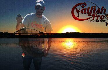 Catfish Pro Catfish Bait