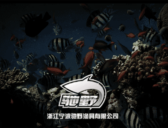 Ningbo Chiye Fishing Tackle Co., Ltd