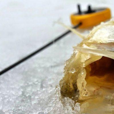 Akara Fishing