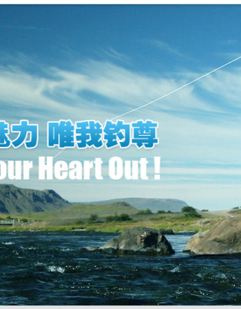 Cixi Weite Fishing Tackle Co., Ltd.