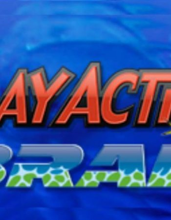 PlayAction Braid Products