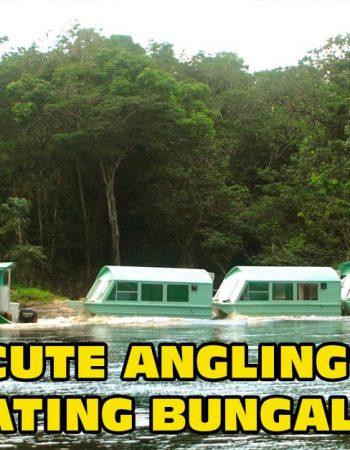 Acute Angling