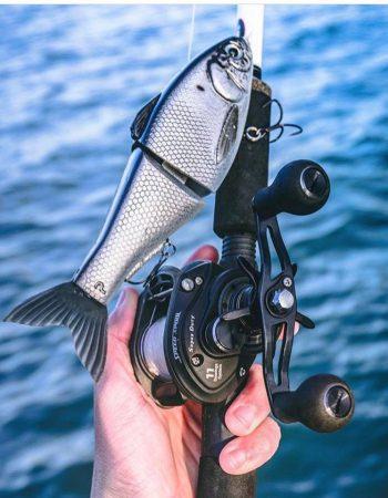 Lew's Fishing