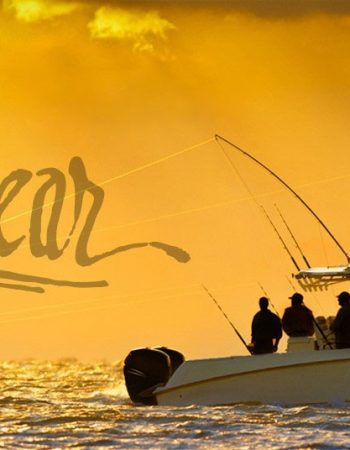 Sea Fear