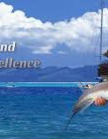 Weihai Welwe Fishing Tackle Co., LTD.