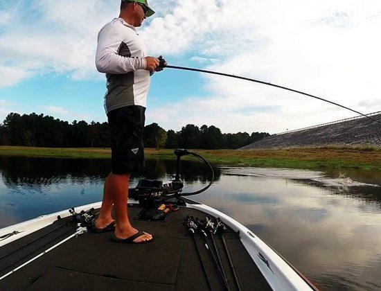 Bill Lewis Fishing