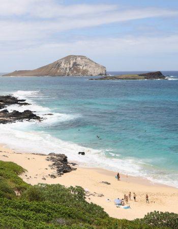 SCOTT HAWAII